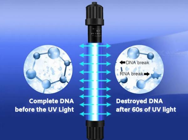 How UVC Light works