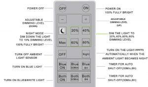 dual remote control